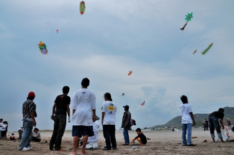 a view of some kites